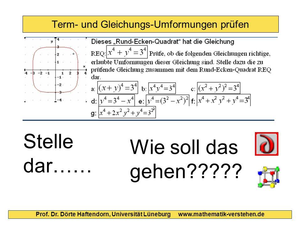 Term- und Gleichungs-Umformungen prüfen Prof. Dr. Dörte Haftendorn, Universität Lüneburg www.mathematik-verstehen.de Stelle dar…… Wie soll das gehen??