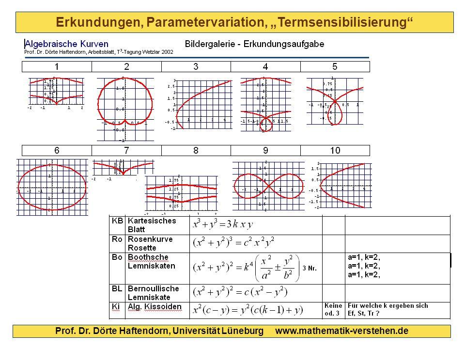 """Erkundungen, Parametervariation, """"Termsensibilisierung"""" Prof. Dr. Dörte Haftendorn, Universität Lüneburg www.mathematik-verstehen.de"""