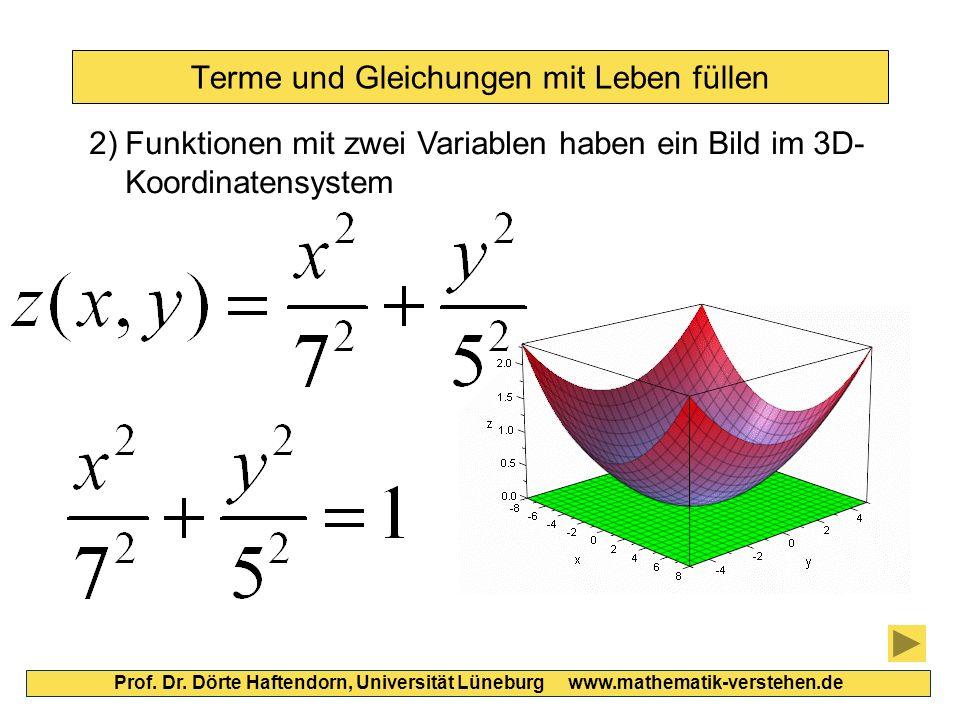 Terme und Gleichungen mit Leben füllen Prof. Dr. Dörte Haftendorn, Universität Lüneburg www.mathematik-verstehen.de 2)Funktionen mit zwei Variablen ha