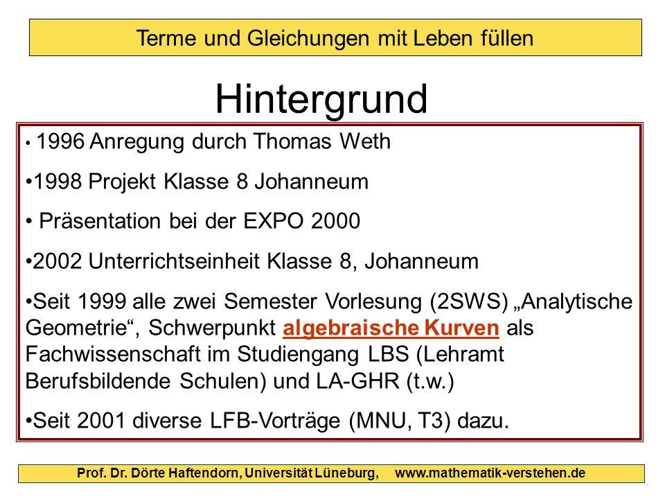 Terme und Gleichungen mit Leben füllen Hintergrund 1996 Anregung durch Thomas Weth 1998 Projekt Klasse 8 Johanneum Präsentation bei der EXPO 2000 2002