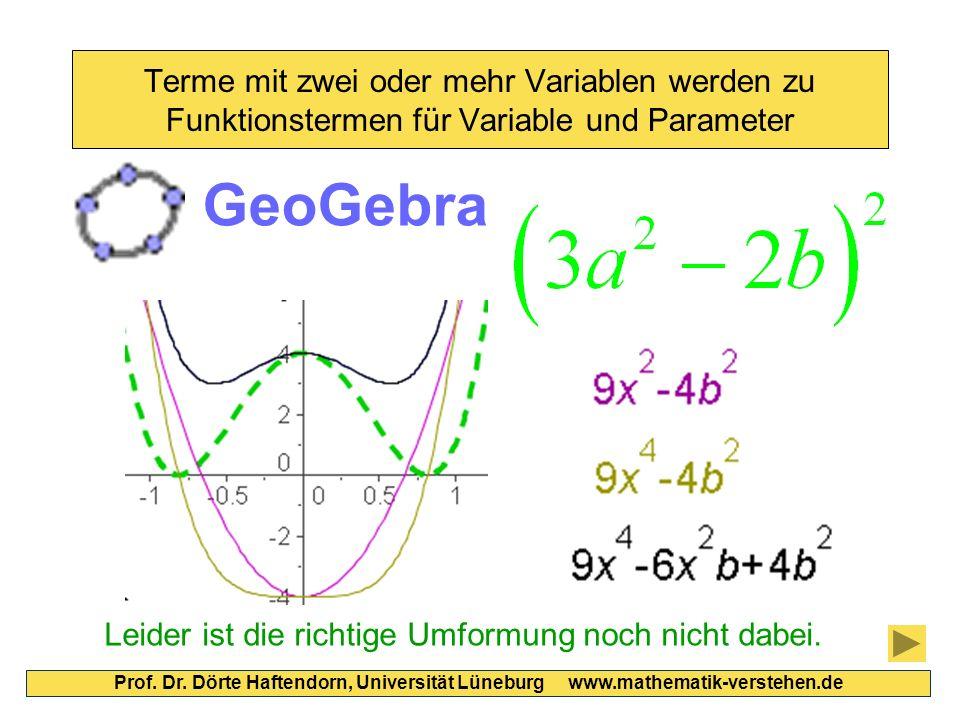 Terme mit zwei oder mehr Variablen werden zu Funktionstermen für Variable und Parameter Prof.