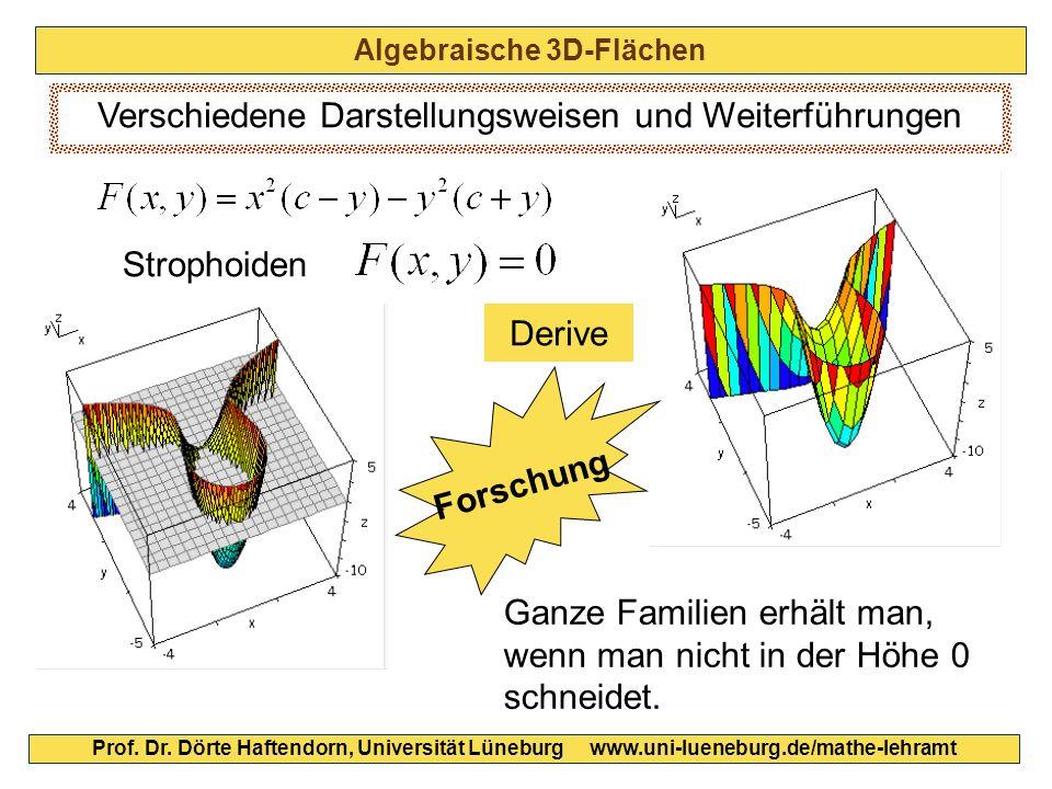 Algebraische 3D-Flächen Prof. Dr. Dörte Haftendorn, Universität Lüneburg www.uni-lueneburg.de/mathe-lehramt Verschiedene Darstellungsweisen und Weiter