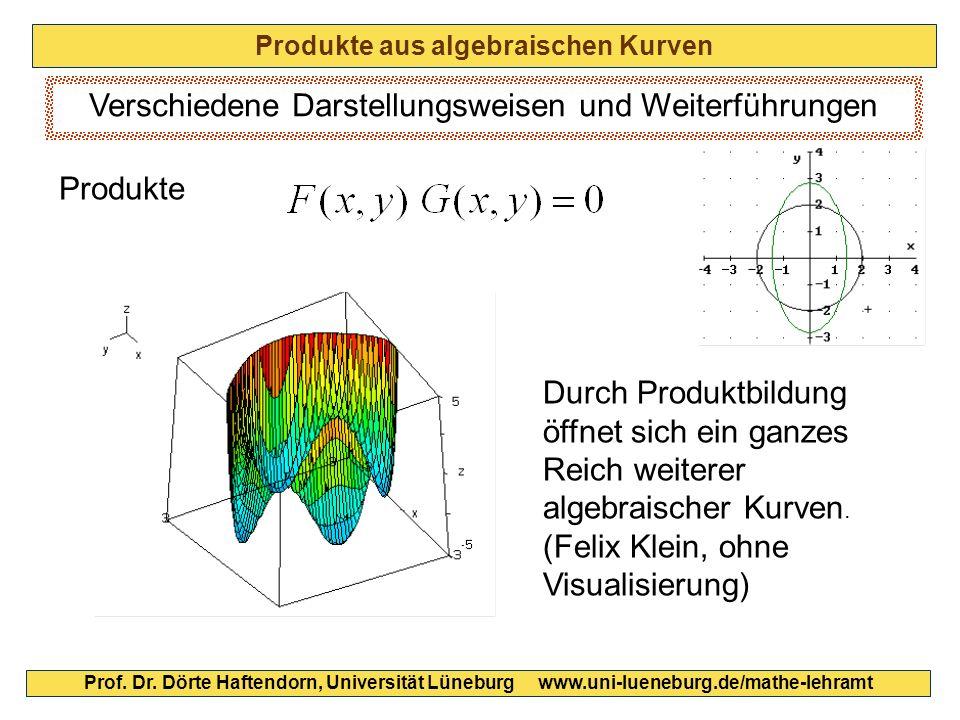 Produkte aus algebraischen Kurven Prof. Dr. Dörte Haftendorn, Universität Lüneburg www.uni-lueneburg.de/mathe-lehramt Verschiedene Darstellungsweisen