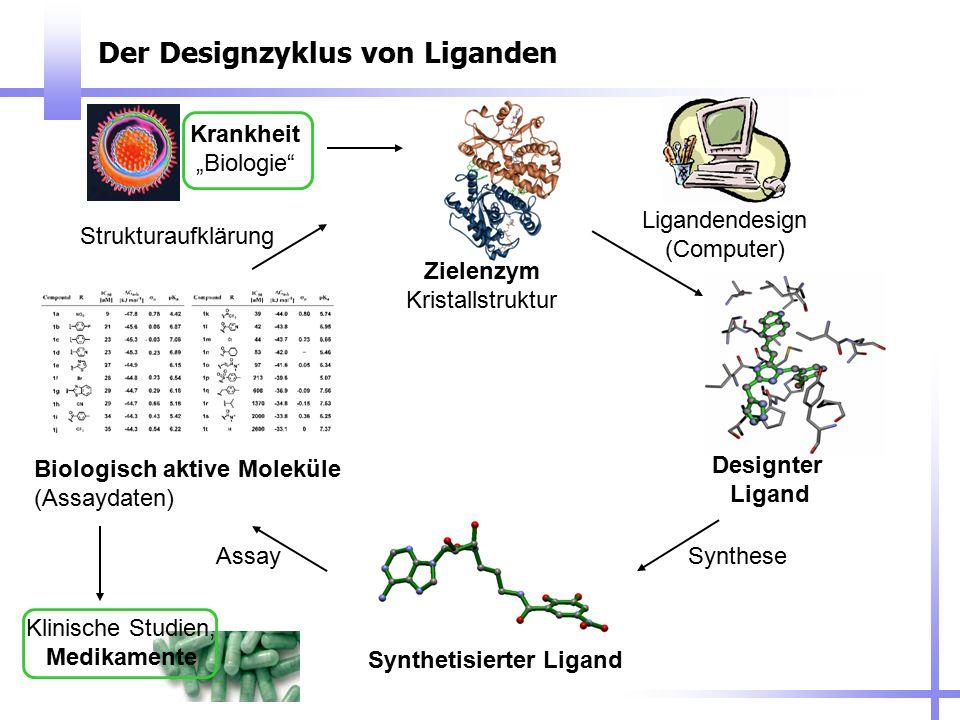 Der Designzyklus von Liganden Zielenzym Kristallstruktur Designter Ligand Synthetisierter Ligand Biologisch aktive Moleküle (Assaydaten) Ligandendesig