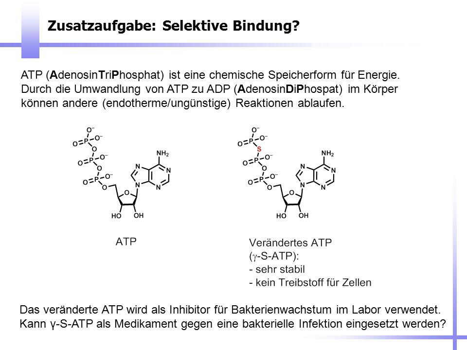 Zusatzaufgabe: Selektive Bindung? Das veränderte ATP wird als Inhibitor für Bakterienwachstum im Labor verwendet. Kann γ-S-ATP als Medikament gegen ei