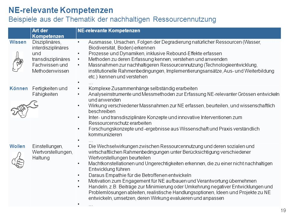 19 Art der Kompetenzen NE-relevante Kompetenzen WissenDisziplinäres, interdisziplinäres und transdisziplinäres Fachwissen und Methodenwissen Ausmasse,