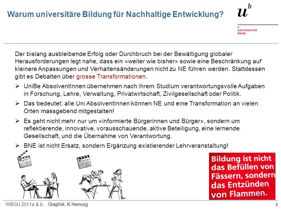 Warum universitäre Bildung für Nachhaltige Entwicklung? 4 Der bislang ausbleibende Erfolg oder Durchbruch bei der Bewältigung globaler Herausforderung