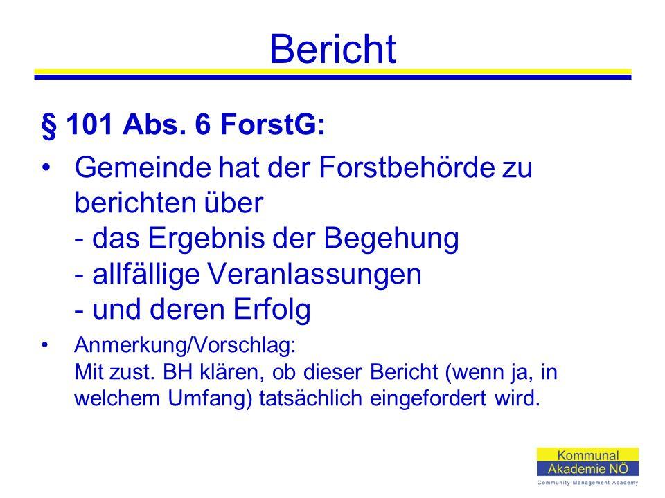 Bericht § 101 Abs.