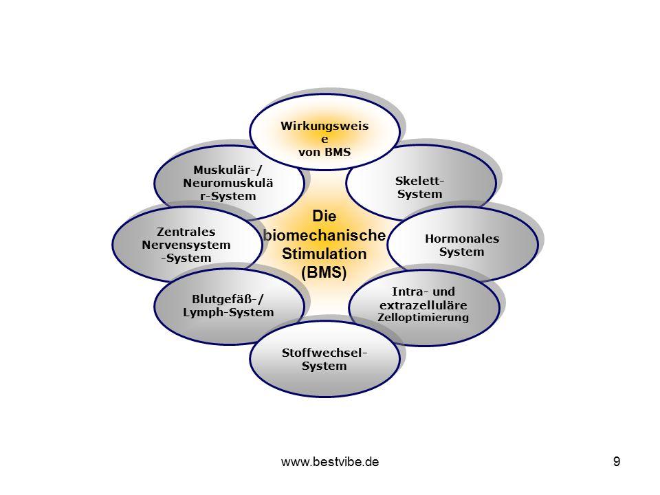 www.bestvibe.de9 Die biomechanische Stimulation (BMS) Die biomechanische Stimulation (BMS) Muskulär-/ Neuromuskulä r-System Muskulär-/ Neuromuskulä r-System Zentrales Nervensystem -System Skelett- System Hormonales System Blutgefäß-/ Lymph-System Blutgefäß-/ Lymph-System Intra- und extrazelluläre Zelloptimierung Intra- und extrazelluläre Zelloptimierung Stoffwechsel- System Wirkungsweis e von BMS Wirkungsweis e von BMS