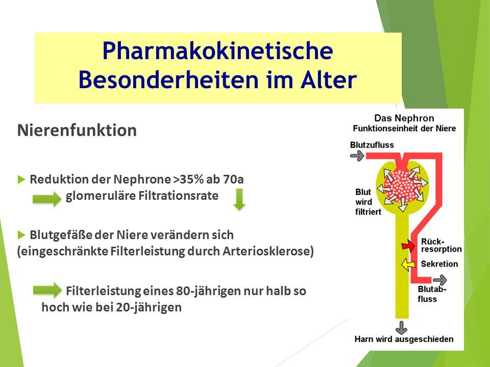 Nierenfunktion  Reduktion der Nephrone >35% ab 70a glomeruläre Filtrationsrate  Blutgefäße der Niere verändern sich (eingeschränkte Filterleistung durch Arteriosklerose) Filterleistung eines 80-jährigen nur halb so hoch wie bei 20-jährigen Pharmakokinetische Besonderheiten im Alter