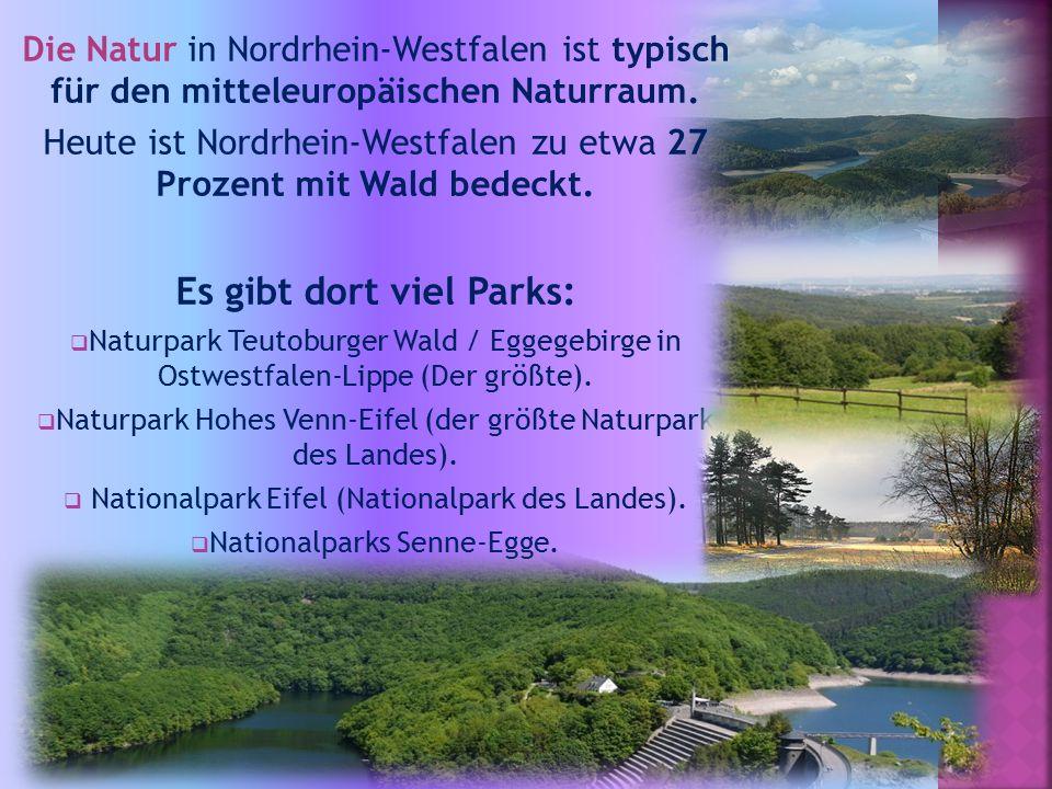 Die Natur in Nordrhein-Westfalen ist typisch für den mitteleuropäischen Naturraum. Heute ist Nordrhein-Westfalen zu etwa 27 Prozent mit Wald bedeckt.
