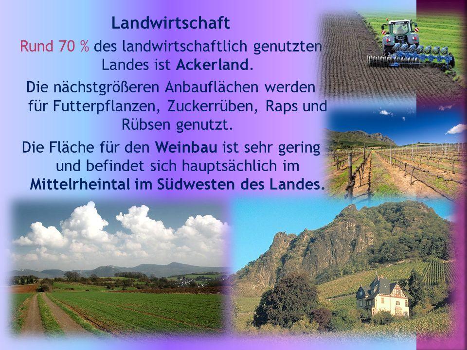 Landwirtschaft Rund 70 % des landwirtschaftlich genutzten Landes ist Ackerland.