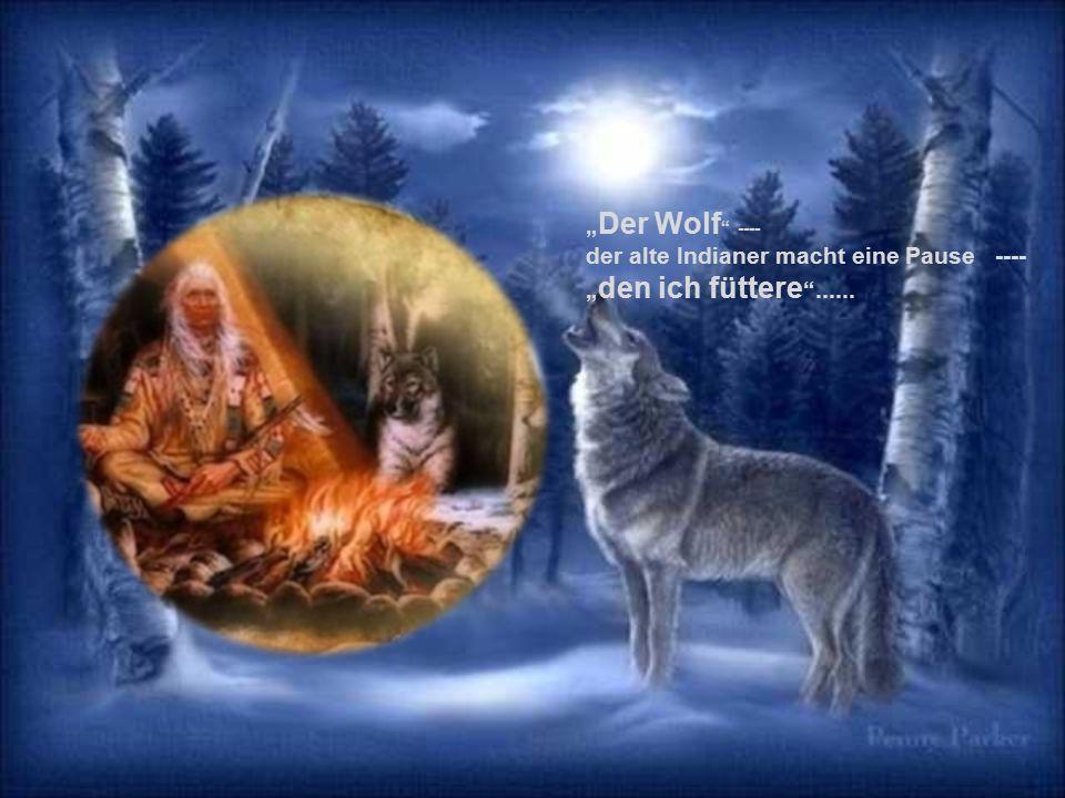 """Der Junge sitzt eine Weile ruhig da. """"Welcher der beiden Wölfe gewinnt den Kampf , will er wissen."""