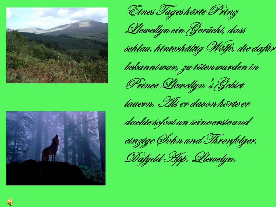 Eines Tages hörte Prinz Llewellyn ein Gerücht, dass schlau, hinterhältig Wölfe, die dafür bekannt war, zu töten wurden in Prince Llewellyn s Gebiet lauern.