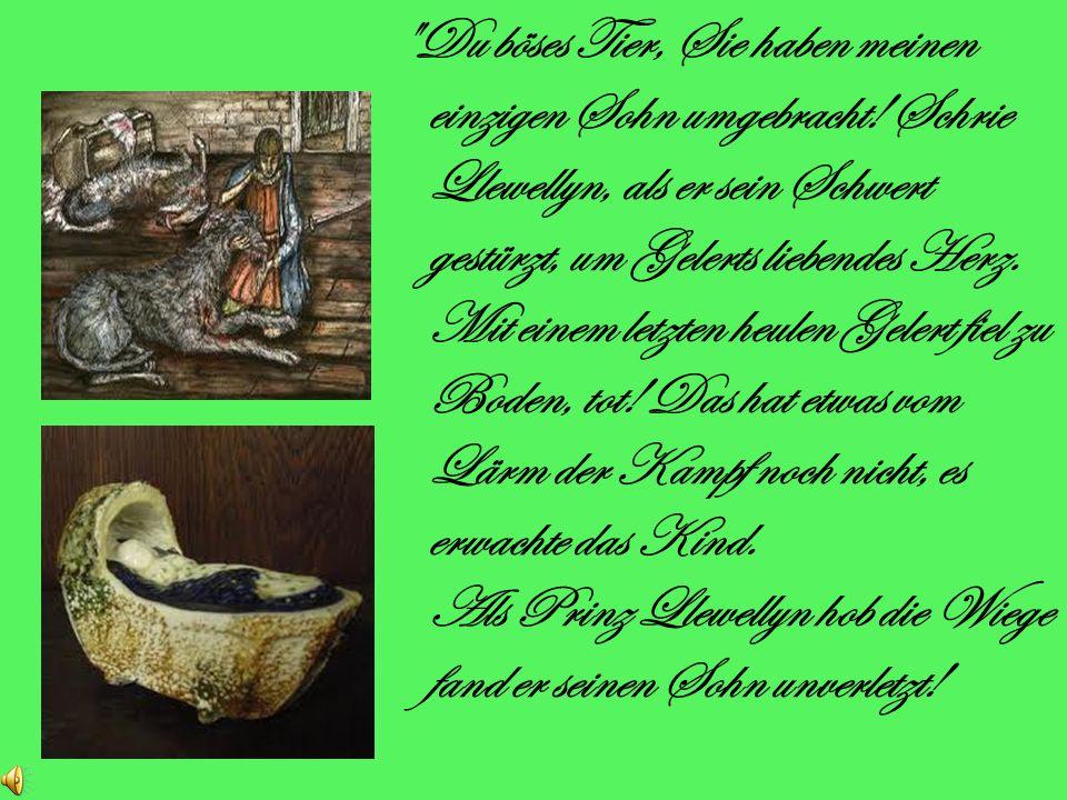 Gelert wurde ebenfalls schwer im Kampf verletzt. Er leckte seine Wunden kläglich und wartete auf seinen Herrn, um zurückzukehren. W enn Llewellyn kehr