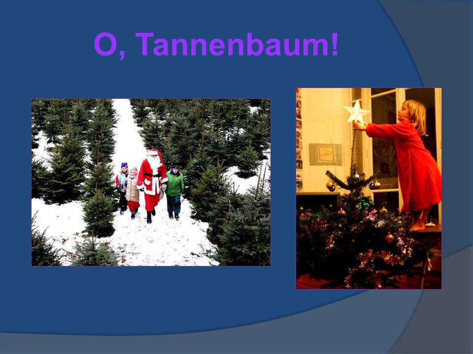 Ein altes Weihnachtslied…  O Tannenbaum, o Tannenbaum  Wie grün sind deine Blätter.