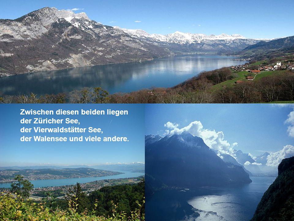 Zwischen diesen beiden liegen der Züricher See, der Vierwaldstätter See, der Walensee und viele andere.