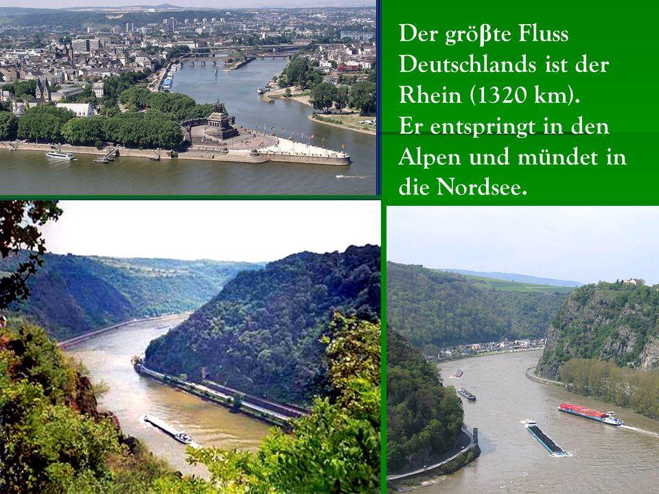 Der grö β te Fluss Deutschlands ist der Rhein (1320 km).