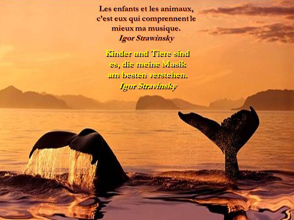 L'amour pour toutes les créatures vivantes est la qualité la plus noble de l'homme. Charles Darwin Charles Darwin Die Liebe zu allen Lebewesen ist die