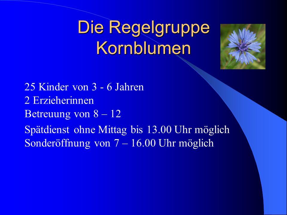 Die Regelgruppe Kornblumen 25 Kinder von 3 - 6 Jahren 2 Erzieherinnen Betreuung von 8 – 12 Spätdienst ohne Mittag bis 13.00 Uhr möglich Sonderöffnung
