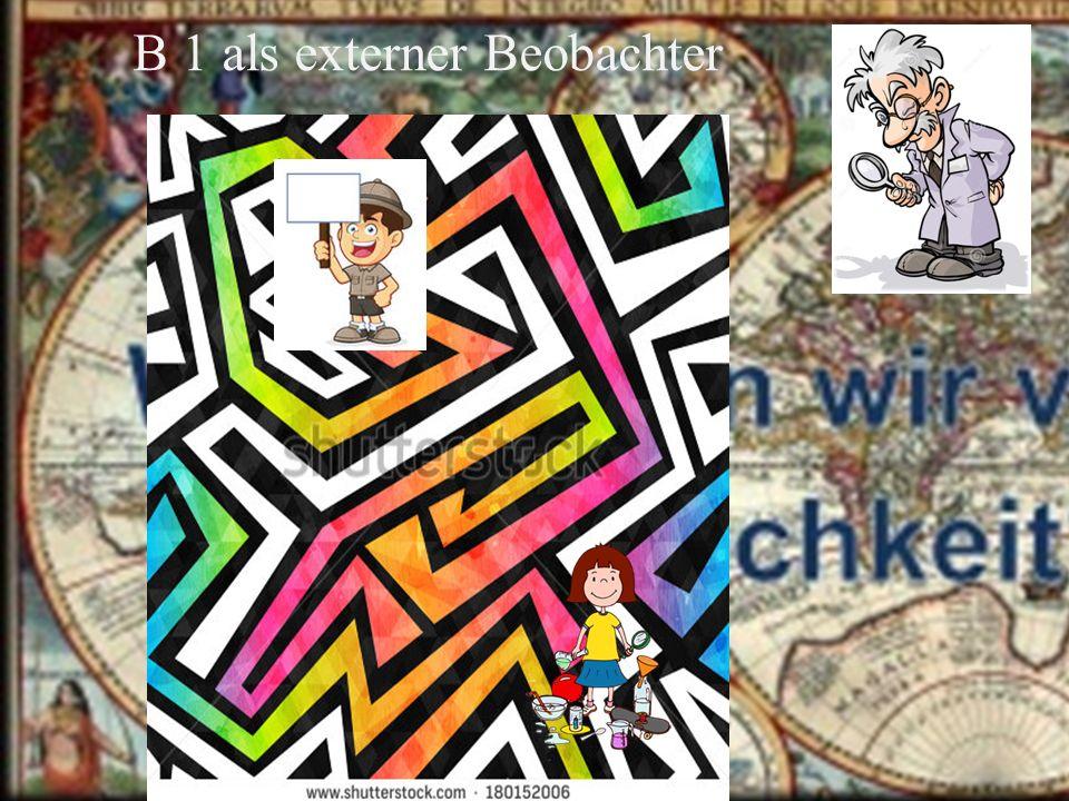 W. Krohn - Labor und Labyrinth - Juni 2016 B 1 als externer Beobachter