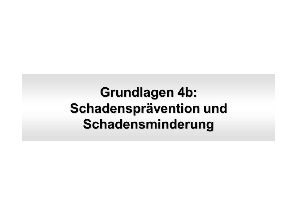 Grundlagen 4b: Schadensprävention und Schadensminderung