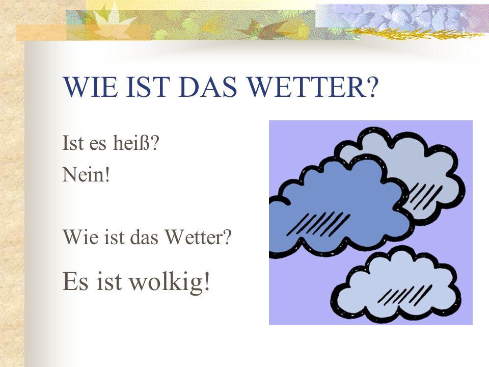 WIE IST DAS WETTER Ist es schönes Wetter Nein! Wie ist das Wetter Es ist windig!