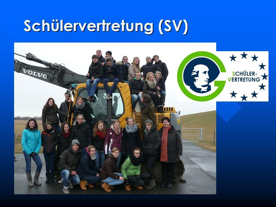 Schülervertretung (SV)