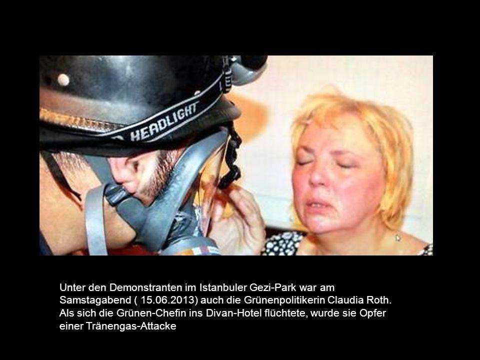 Unter den Demonstranten im Istanbuler Gezi-Park war am Samstagabend ( 15.06.2013) auch die Grünenpolitikerin Claudia Roth.
