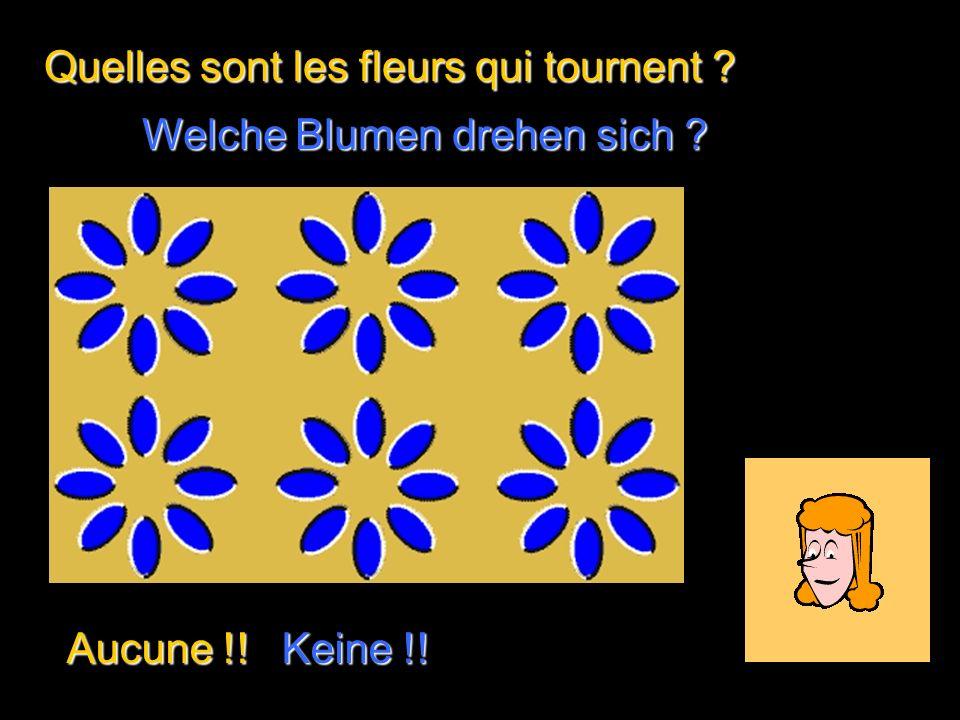 Compte les points noirs… Zähle die schwarzen Punkte … …Ça te donne mal à la tête .