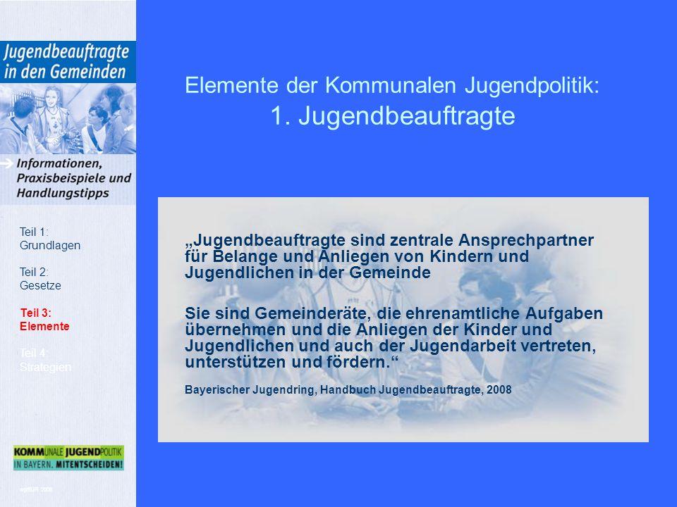wp/BJR 2008 Elemente der Kommunalen Jugendpolitik: 1.