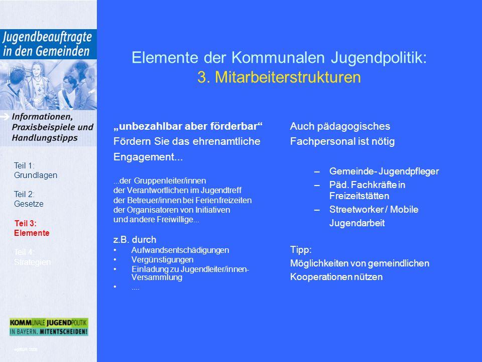 wp/BJR 2008 Elemente der Kommunalen Jugendpolitik: 3.