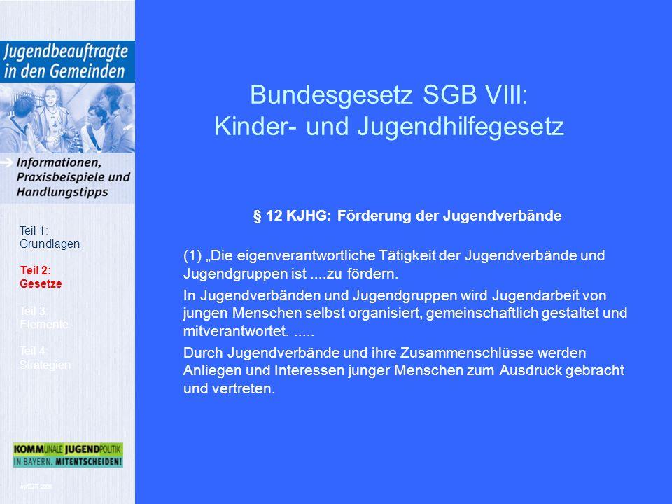 """wp/BJR 2008 § 12 KJHG: Förderung der Jugendverbände (1) """"Die eigenverantwortliche Tätigkeit der Jugendverbände und Jugendgruppen ist....zu fördern."""