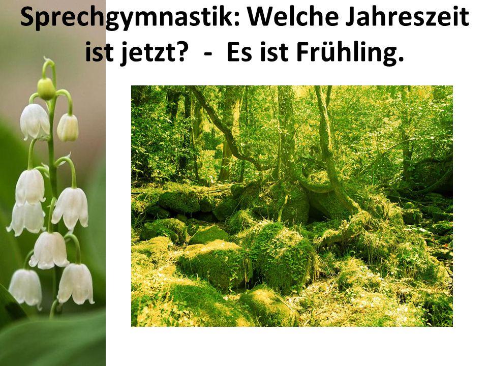 Sprechgymnastik: Welche Jahreszeit ist jetzt? - Es ist Frühling.