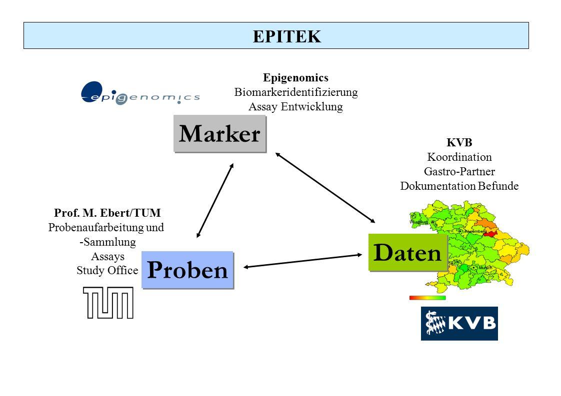 Epigenomics Biomarkeridentifizierung Assay Entwicklung Prof. M. Ebert/TUM Probenaufarbeitung und -Sammlung Assays Study Office EPITEK KVB Koordination