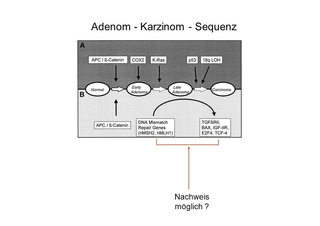  Polypen: n=49 –> 1cm Polyp mit aIEN n=7 Tubulovillöses Adenom-2 Tubulares Adenom-5 –> 1 cm Adenom, ohne aIEN n=9 –< 1 cm Adenom, ohne aIEN n=17 –< 1 cm Adenom, mit aIEN-3 (alle tubulovillös) –Hyperplastische Polypen n=13 <1 cm-11 >1 cm-2  CRC: n=5 –Stadium I-4 –Stadium III-1  Negativ: n=22 ALX4 Methylierung im Plasma: Adenome