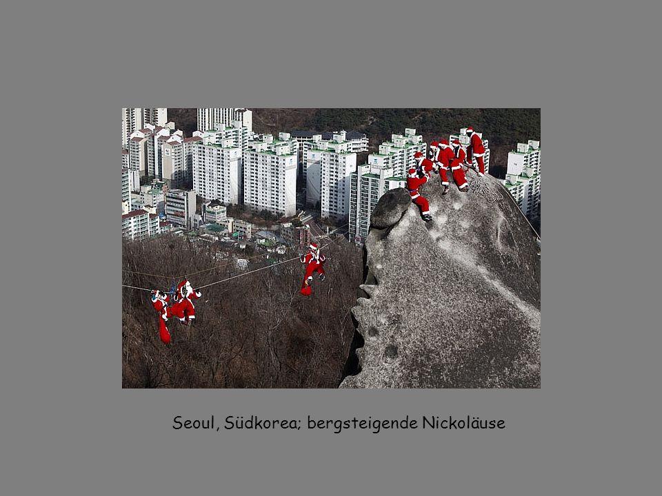 Seoul, Südkorea; bergsteigende Nickoläuse