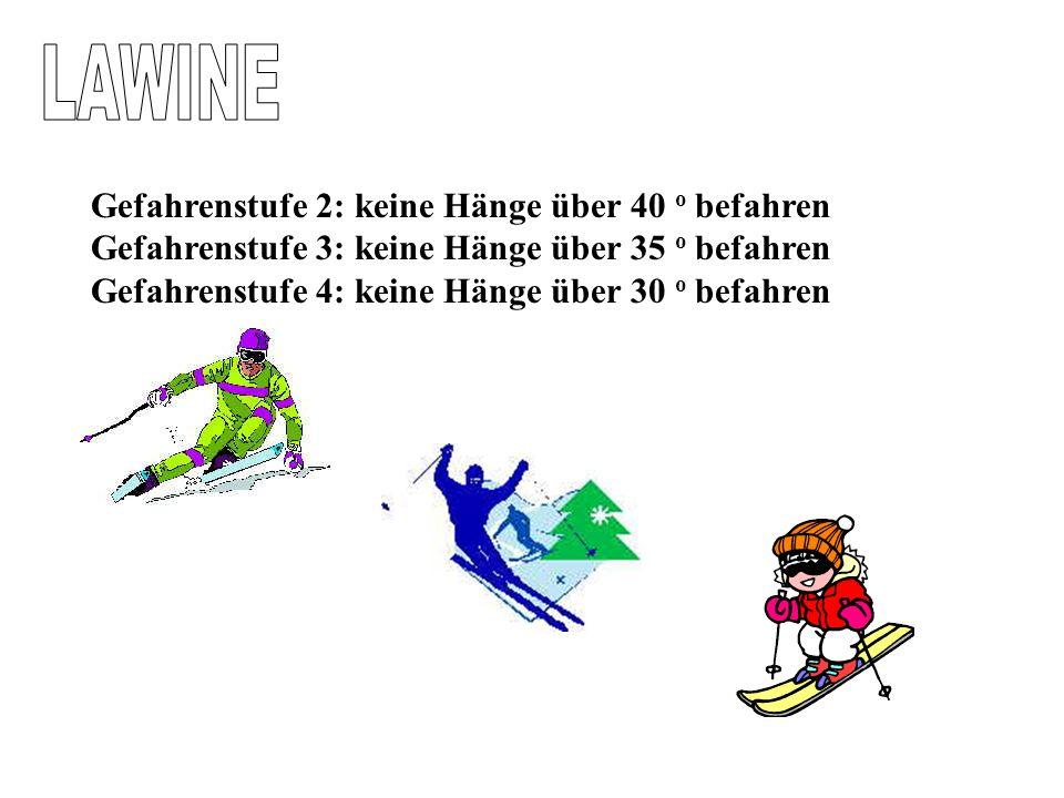 Lawinenwarnstufen © www.BergNews.com Stufe 1Geringe Gefahr.