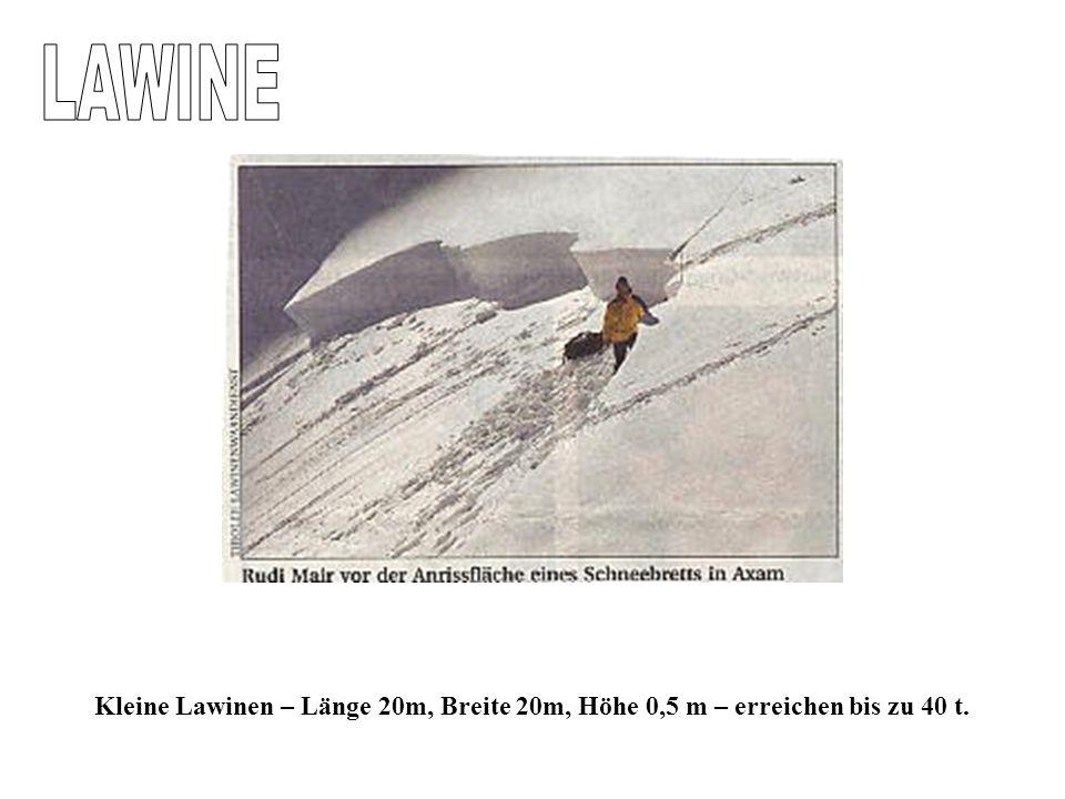 Kleine Lawinen – Länge 20m, Breite 20m, Höhe 0,5 m – erreichen bis zu 40 t.