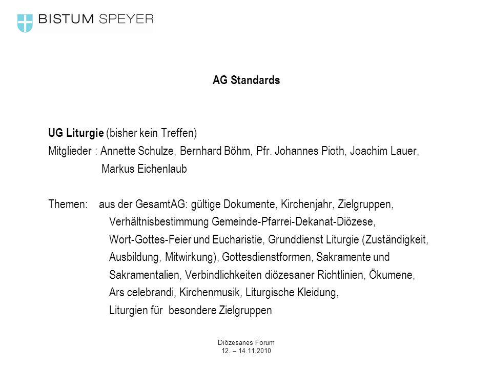 Diözesanes Forum 12. – 14.11.2010 AG Standards UG Liturgie (bisher kein Treffen) Mitglieder : Annette Schulze, Bernhard Böhm, Pfr. Johannes Pioth, Joa