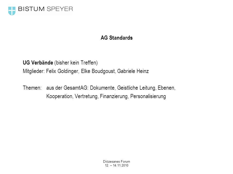 Diözesanes Forum 12. – 14.11.2010 AG Standards UG Verbände (bisher kein Treffen) Mitglieder: Felix Goldinger, Elke Boudgoust, Gabriele Heinz Themen:au