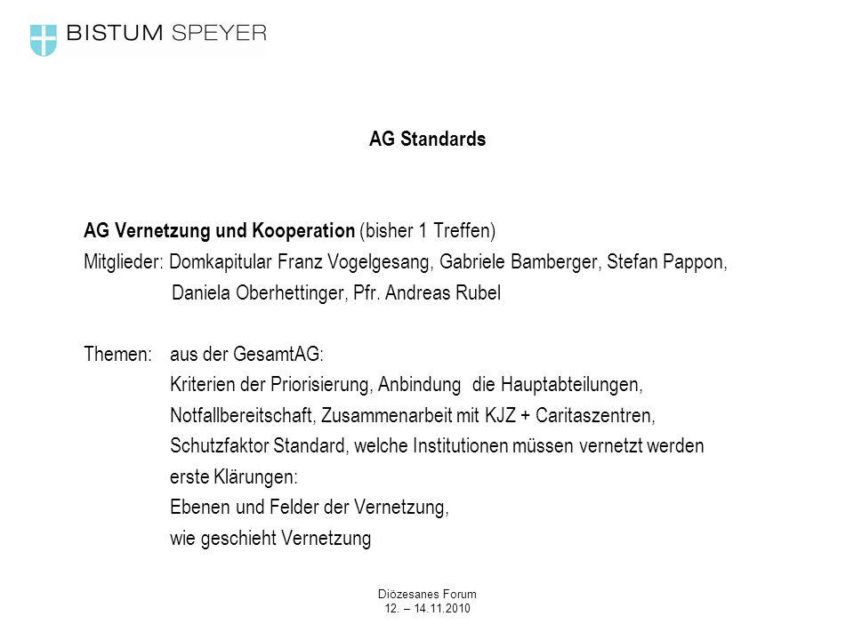 Diözesanes Forum 12. – 14.11.2010 AG Standards AG Vernetzung und Kooperation (bisher 1 Treffen) Mitglieder: Domkapitular Franz Vogelgesang, Gabriele B