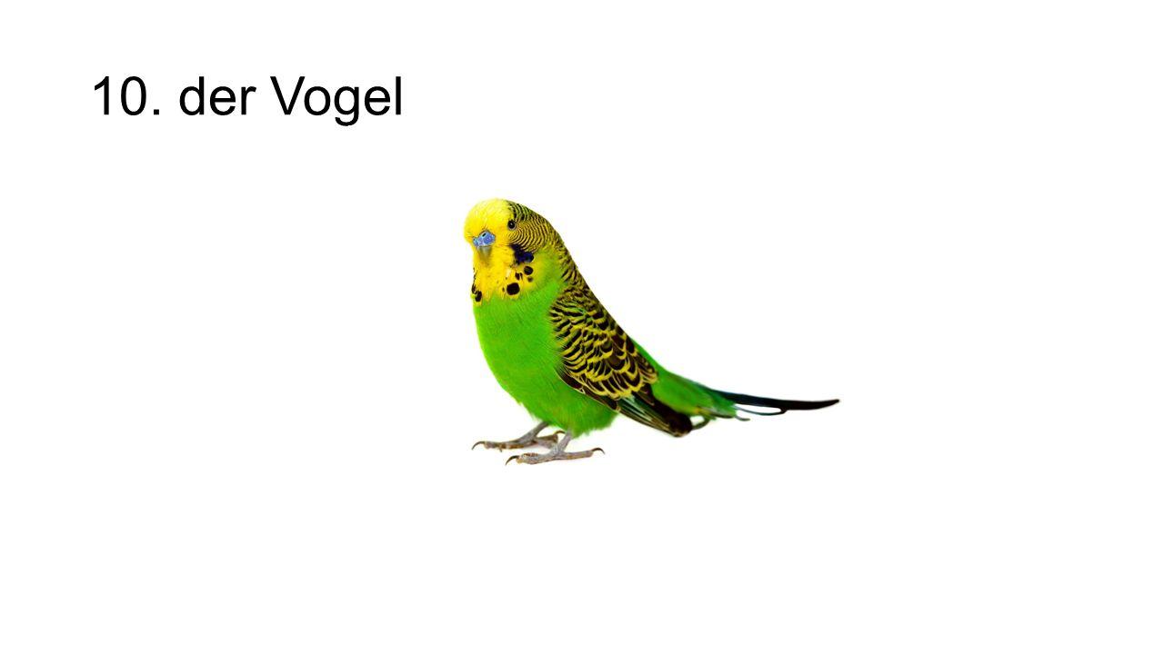 10. der Vogel