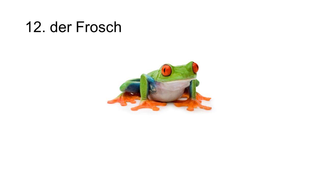 12. der Frosch