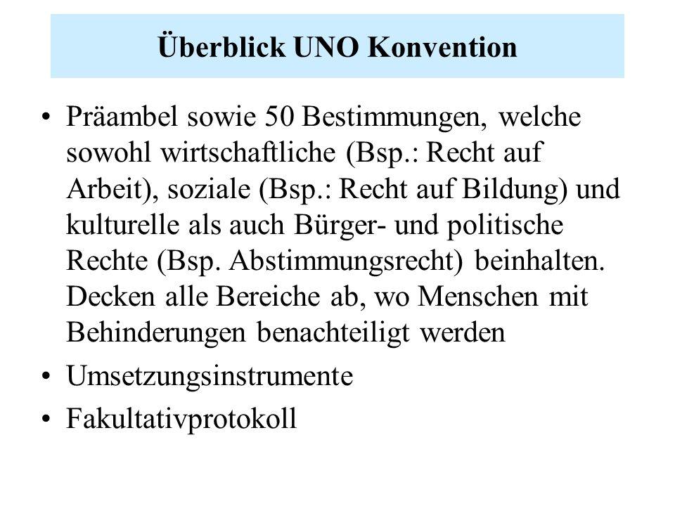 Überblick UNO Konvention Präambel sowie 50 Bestimmungen, welche sowohl wirtschaftliche (Bsp.: Recht auf Arbeit), soziale (Bsp.: Recht auf Bildung) und kulturelle als auch Bürger- und politische Rechte (Bsp.