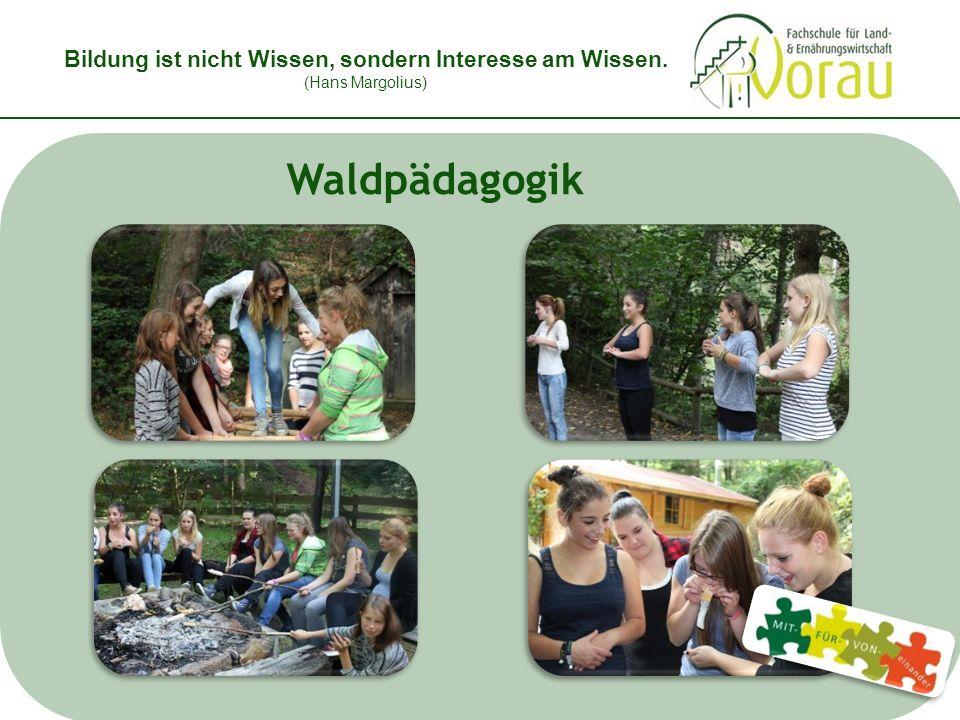 Bildung ist nicht Wissen, sondern Interesse am Wissen. (Hans Margolius) Waldpädagogik