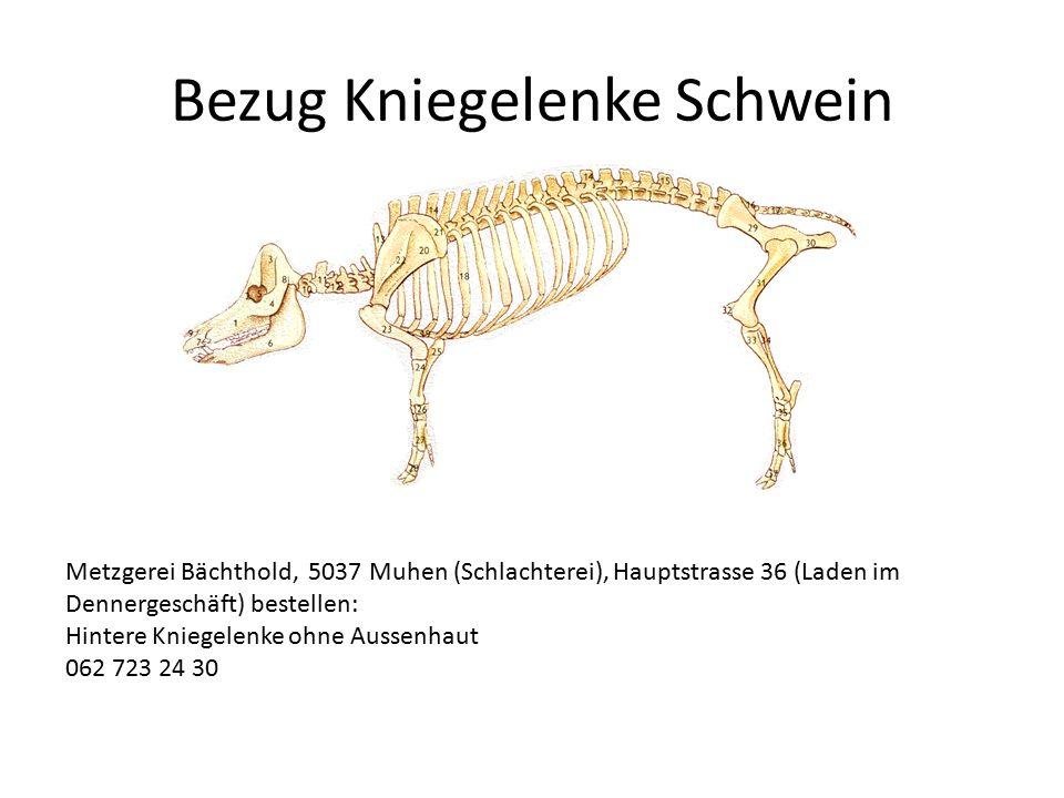 Bezug Kniegelenke Schwein Metzgerei Bächthold, 5037 Muhen (Schlachterei), Hauptstrasse 36 (Laden im Dennergeschäft) bestellen: Hintere Kniegelenke ohn