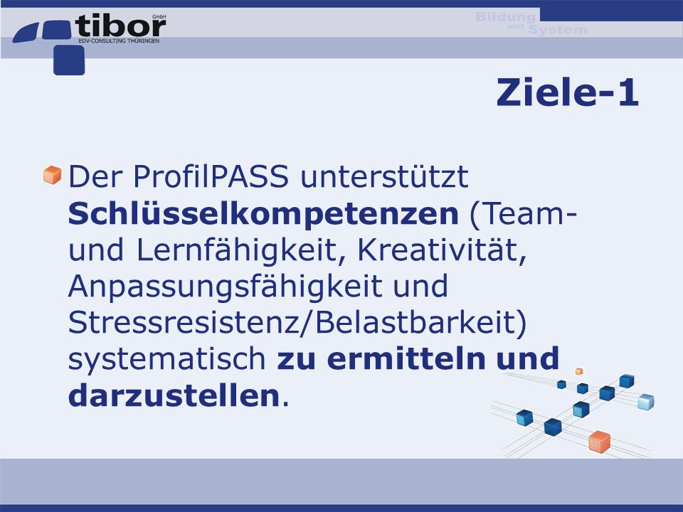Ziele-1 Der ProfilPASS unterstützt Schlüsselkompetenzen (Team- und Lernfähigkeit, Kreativität, Anpassungsfähigkeit und Stressresistenz/Belastbarkeit)