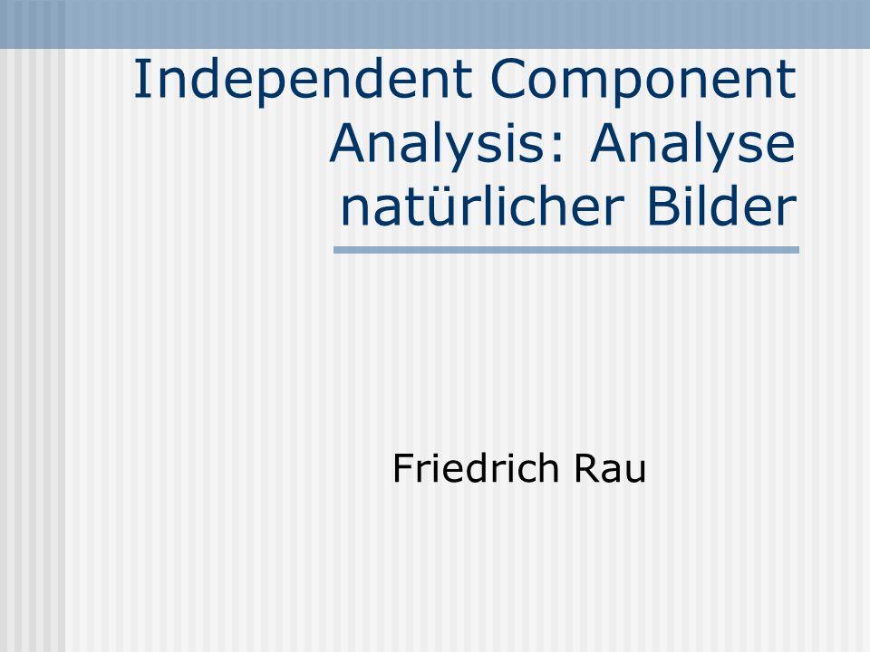 Independent Component Analysis: Analyse natürlicher Bilder Friedrich Rau