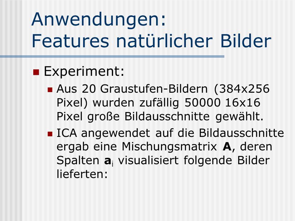 Anwendungen: Features natürlicher Bilder Experiment: Aus 20 Graustufen-Bildern (384x256 Pixel) wurden zufällig 50000 16x16 Pixel große Bildausschnitte gewählt.